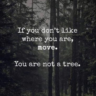 You're not a tree.